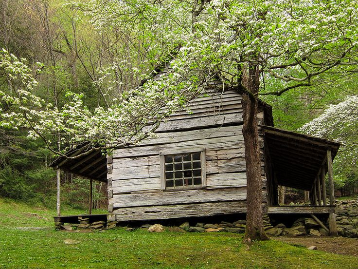 937 best log cabins images on pinterest log cabins for Dogwood cabin