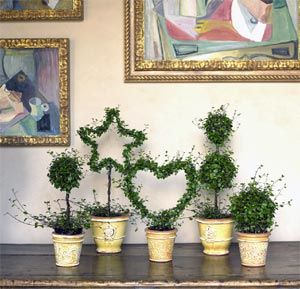 Angel vine topiaries - trying this for myself!