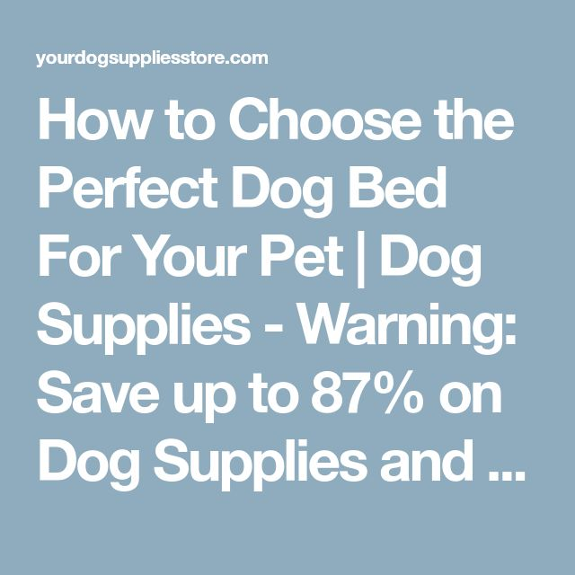 How to Choose the Perfect Dog Bed For Your Pet | Dog Supplies - Warning: Save up to 87% on Dog Supplies and Dog Accessories at Our Online Pet Supply Shop