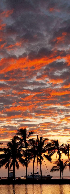 【H.I.S.】【Sunset, Hawaii】 #his_orange