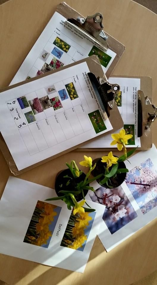 Signs of Spring observations. Using the camera to record their findings and opportunities to write for a purpose at Chadwell Preschool.