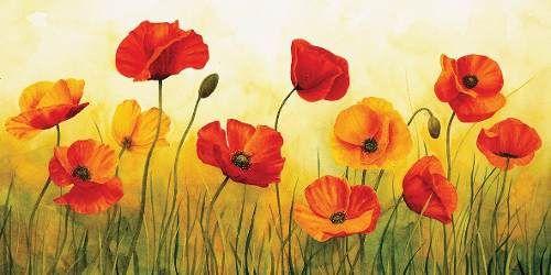 flores amapolas en tela canvas bastidor de 100x50 cm