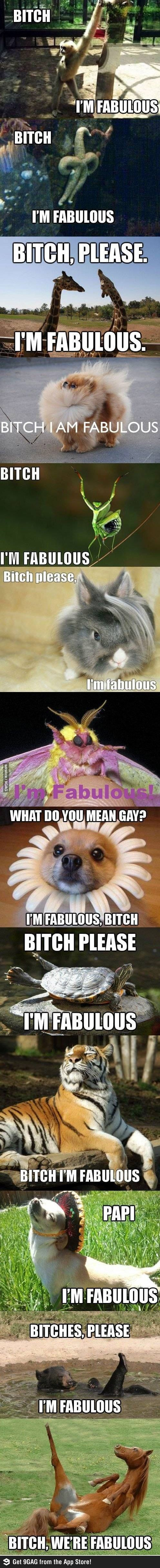 Bitch - I am fabulous...reminds me of momma. miss her more and more every day,