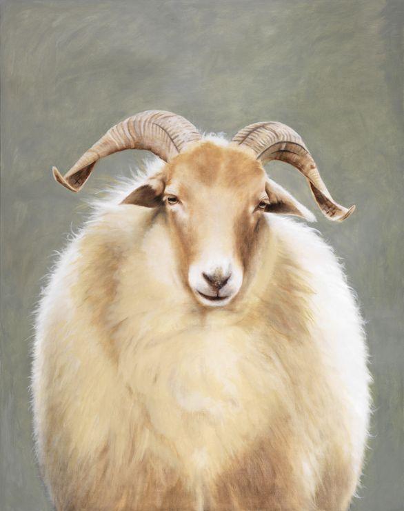 Portrait of Heath Sheep, oil on canvas, 120 x 150 cm by Patty van Loon