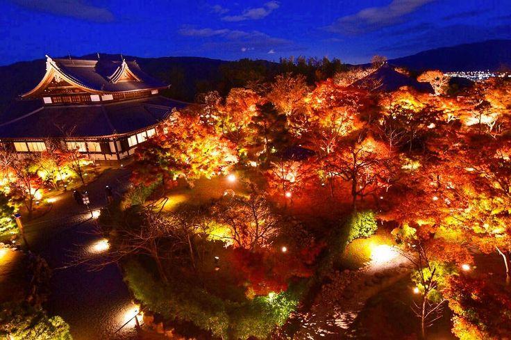 ' ' 【京都の紅葉】将軍塚青龍殿の紅葉🍁 ' 2016.11.24撮影 ' #kyoto #京都 #将軍塚 #将軍塚青龍殿 #ライトアップ #lightup #紅葉 #秋 #autumn #fall #team_jp_ #gf_japan #igersjp #ig_japan #ig_nippon #wu_japan #loves_nippon #lovers_nippon #japanfocus #icu_japan #wonderful_places #ptk_japan #japan_night_view ' #team京都 #team_jp_西 京都 #team_jp_秋色2016 #はなまっぷ紅葉2016 #lovers_nippon_2016秋 #ぶらり京都撮影部 ' #k_紅葉2016
