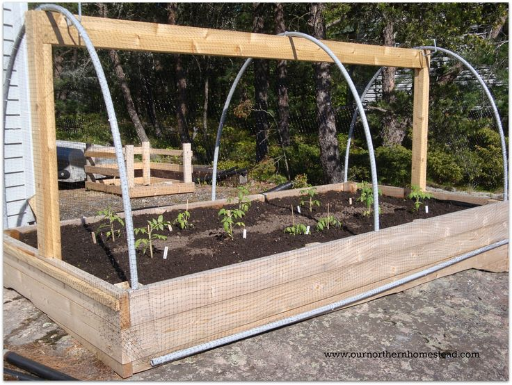 Diy Raised Garden Bed Easy Cheap Way To Keep Animals