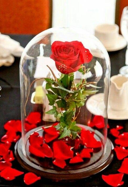 Rosa de A Bela e a Fera