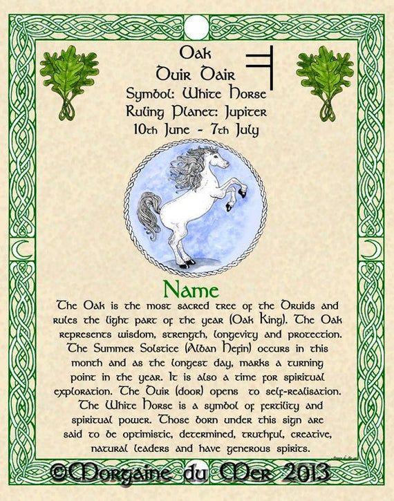Hawthorn And Chalice Celtic Zodiac Sign Print May 13 June 9 Etsy Celtic Zodiac Signs Celtic Tree Astrology Celtic Zodiac