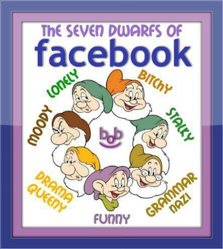 The seven dwarfs of Facebook