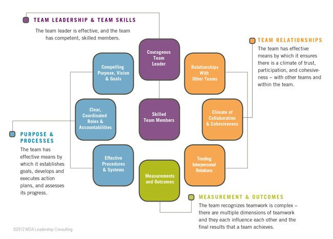 management team development Team models - different types of teams teams are the principal building blocks of the strategy of successful organizations the focus of your organization may be on service, quality, cost, value, speed, efficiency, performance, or any other similar goals, but teams remain the central methodology of most organizations in the private, non-profit .
