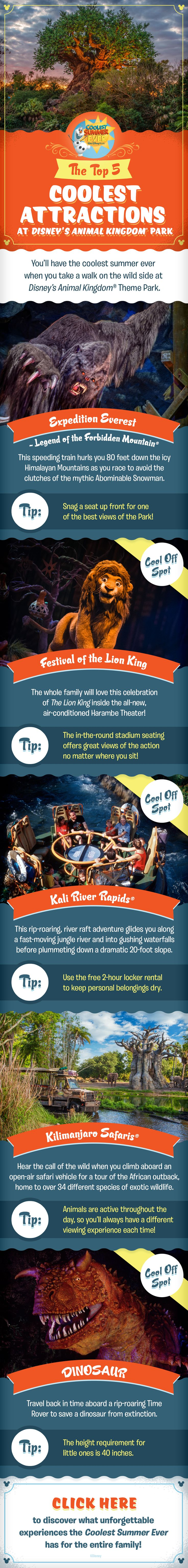 Check out the Top 5 Coolest Attractions at Disney's Animal Kingdom and get ready to have the Coolest Summer Ever as you plan your family vacation at Walt Disney World! Whether you are craving thrills on Expedition Everest, looking to see animals on Kilimanjaro Safaris, or wanting to check out Festival of the Lion King, there's something for everyone in your family to enjoy!