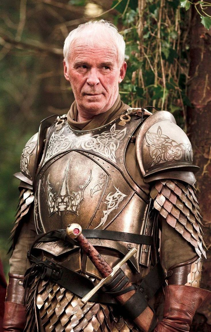 "Barristan ""The Bold"" Selmy, a celebrated hero in Westeros. heir of Lyonel Selmy. As a boy, he donned the armor of a mystery knight during a tourney, where Prince Duncan the Small took pity on him when all others laughed. He lost at his first tilt, and Prince Duncan named him ""the Bold"" upon discovering his opponent had been a 10year old boy. knighted at the age of 16 by King Aegon V, joined the Kingsguard at the age of 23, after slaying Maelys the Monstrous during the War of the Ninepenny"