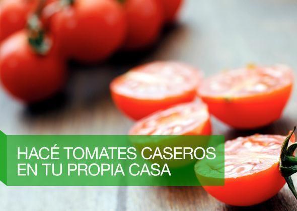 huerta de tomate