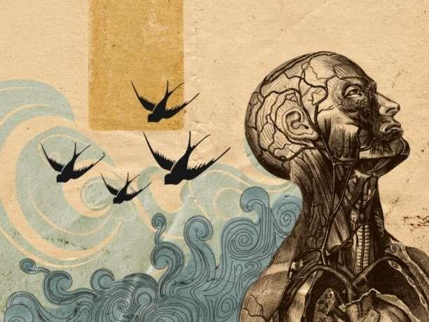 Τα 8 είδη νοημοσύνης