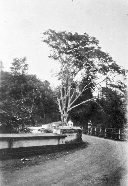 Tjandjoer ten westen van Bandoeng op Java in 1928