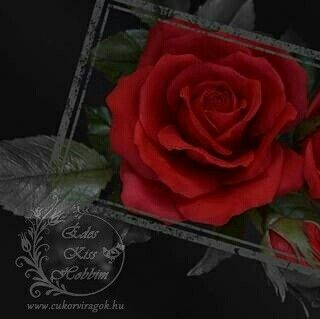 #edeskisshobbim #cukorvirag #cukorviragkurzus #cukorviragtanfolyam #tortadiszites #hobbicukrasz #cukorviragkeszites #kezmuveshobbi #sugarart #sugarfloweracademy #sugarflowers #cakedecorating www.cukorviragok.hu https://facebook.com/edeskisshobbimescukorviragaim/