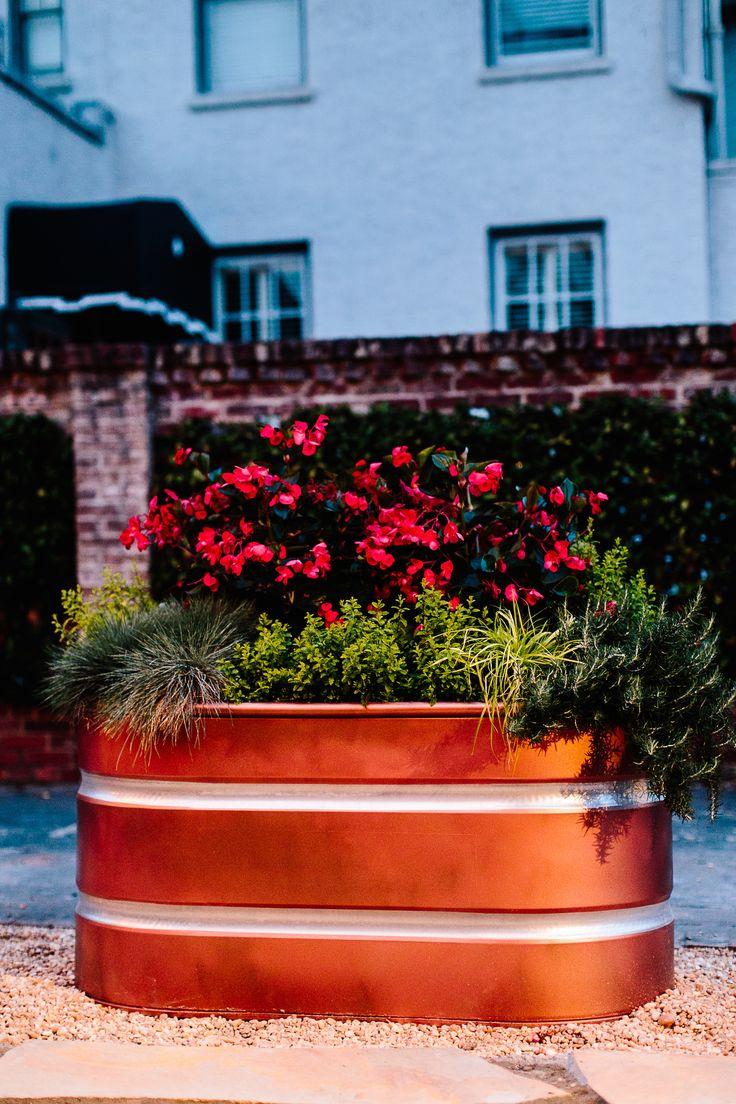 best 25 trough planters ideas on pinterest plant troughs