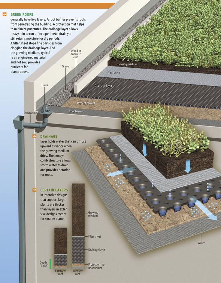 ❧ Green roof En Socyr somos especialistas en Impermeabilizacion con epdm resitrix totalmente adherido de Cubiertas ajardinadas Green roofs insulate like a blanket, saving energy; they provide natural habitats for birds, butterflies, honeybees, lady bugs, and migrating birds. On this roof, soil depth ranges from four to eight inches. Más información en www.socyr.com 962712423