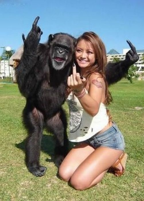 Girl and Chimp showing middle finger