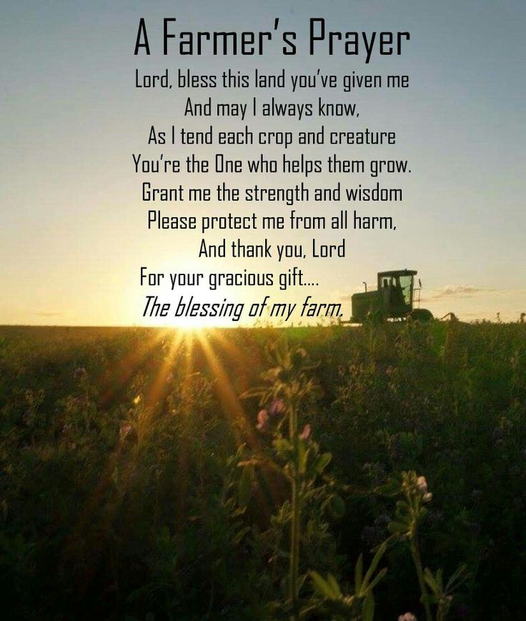 Farming Quotes: 292 Best Images About Love My Life, I'm A Farmers Wife On