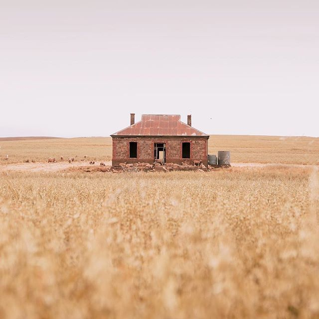 This little house...✨ While travelling through South Australia to @jacobscreekwine I fell inlove with so many elements of the landscape here. The significance of the people, the places and the entwined history of this beautiful region has opened my eyes.  #madeby #guestofjacobscreek