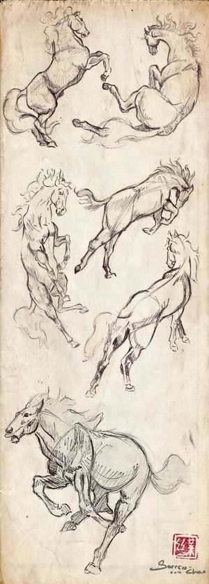 animal_studies___horses_by_sorren_chan-d5820rg.jpg 300×839 pixeles