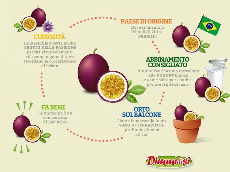 Perché la #Maracuja è chiamata frutto della passione? Scopri qualche #curiosità in più: http://www.dimmidisi.it/it/dimmidipiu/cose_buone/article/maracuja_dal_brasile_con_passione.htm - #dimmidisi #alimentazione #food #frutta #fruit #infografica #infographic #brasile #brasil