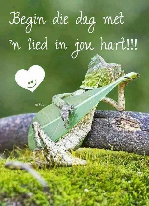 Begin jou dag met 'n lied in jou hart!!!