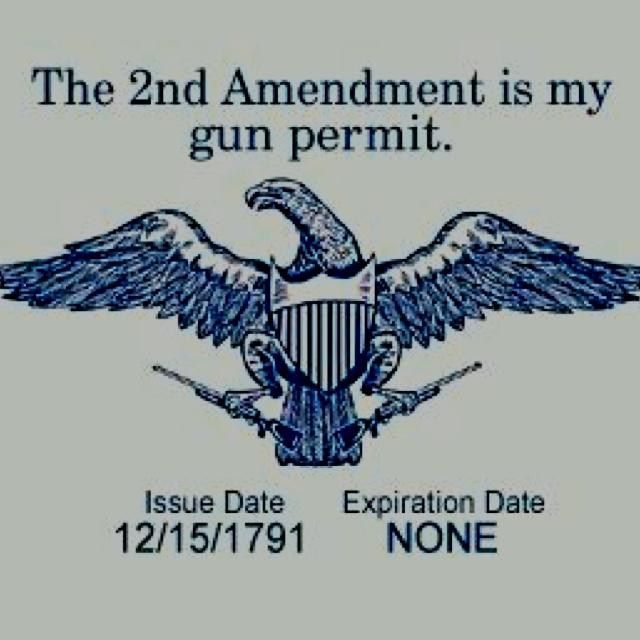 best guns nd amendment images nd  the secondamendment is my gun permit issue date 12 15