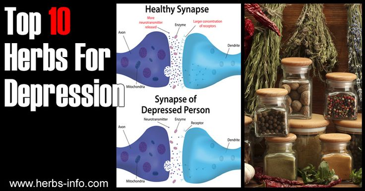 Top 10 Herbs For Depression ►► http://www.herbs-info.com/herbs-for-depression.html?i=p