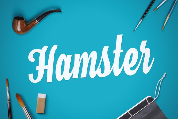 Hamster is a fun cursive typeface inspired by brush lettering and traditional sign painting.