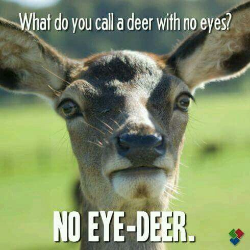 What do you call a deer with no eyes? No eye deer.