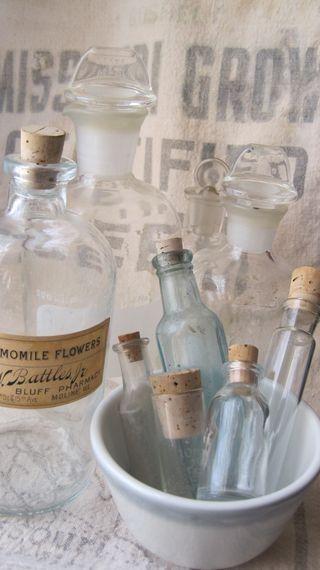 bottles for seasonal flower displays