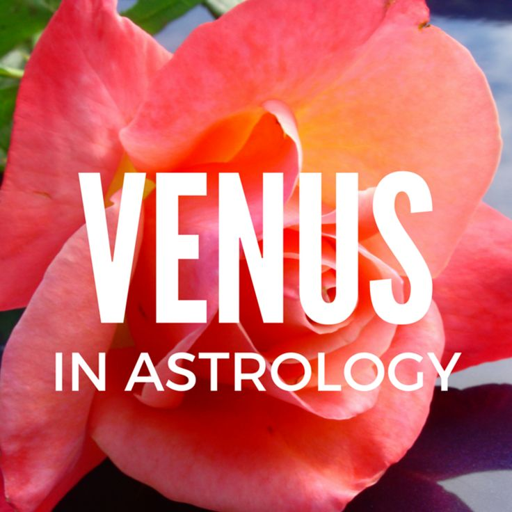 VENUS — Canary Quill Astrology