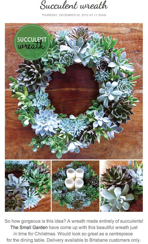 Love the succulent wreath used for the Advent wreath. Saw one of these at Central Mkt - next year!