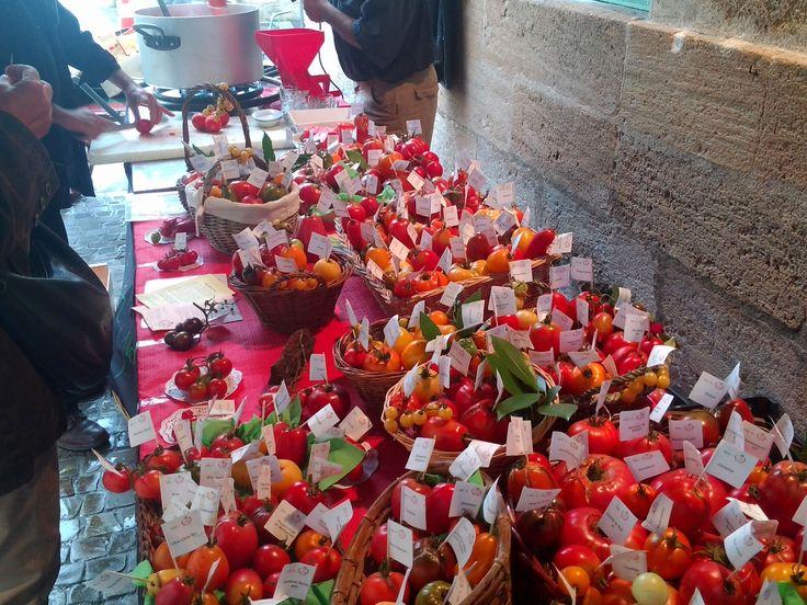 Tomato Festival, Marmande, France
