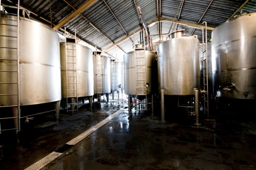 Hatten Wines winery uses the state of the art technology to make high quality of wines.