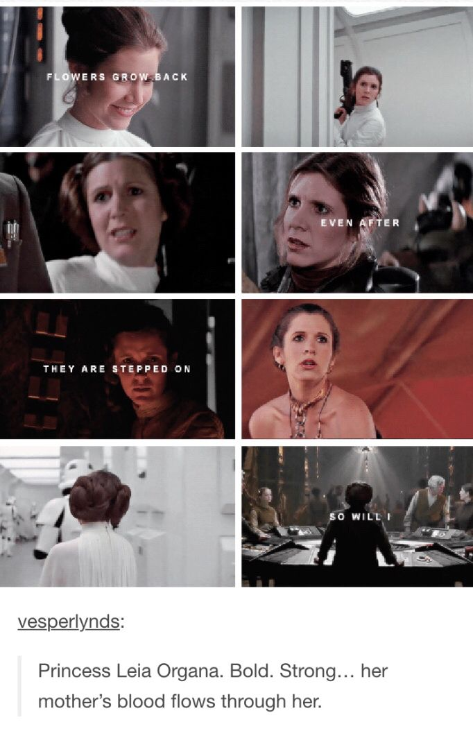 GENERAL!!!! :)))) and she'll always be a princess to me :)))