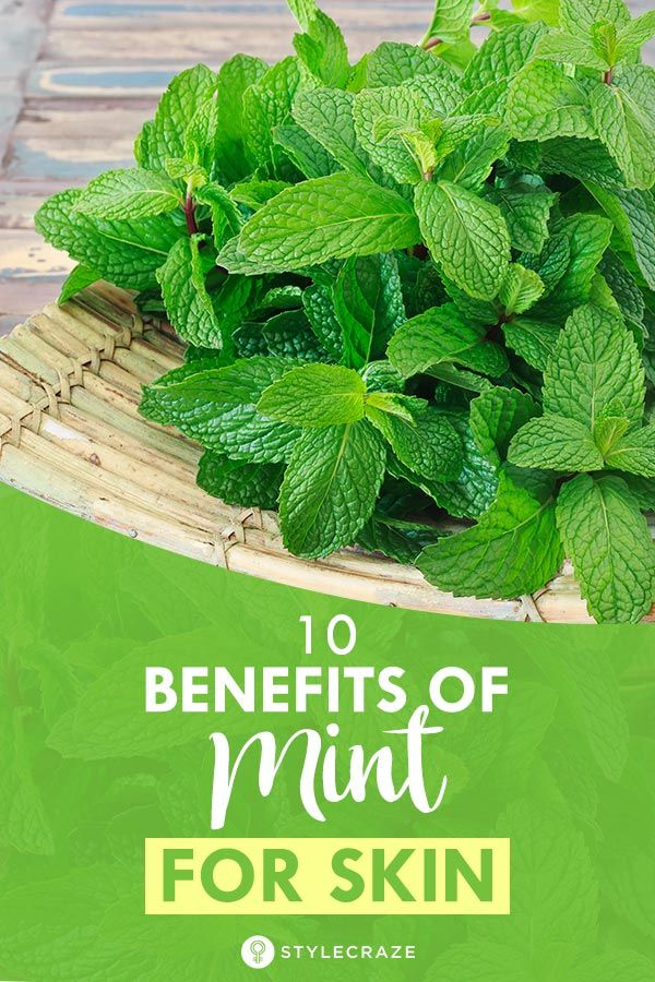 ed4184050116 10 Benefits Of Mint (Pudina) For Skin And 11 Ways To Use It