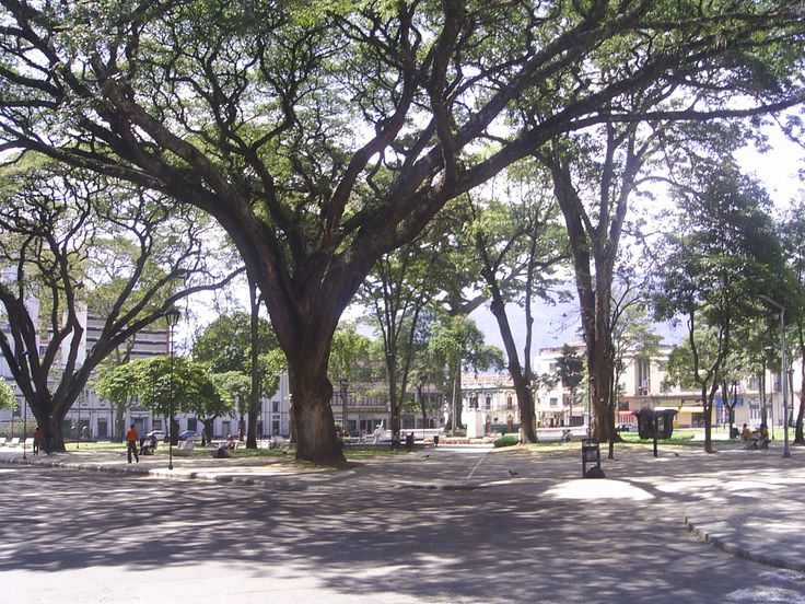 Plaza de Bolivar, Ibague, 2008