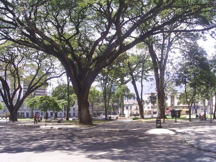 Plaza de Bolivar, Ibague, 2008