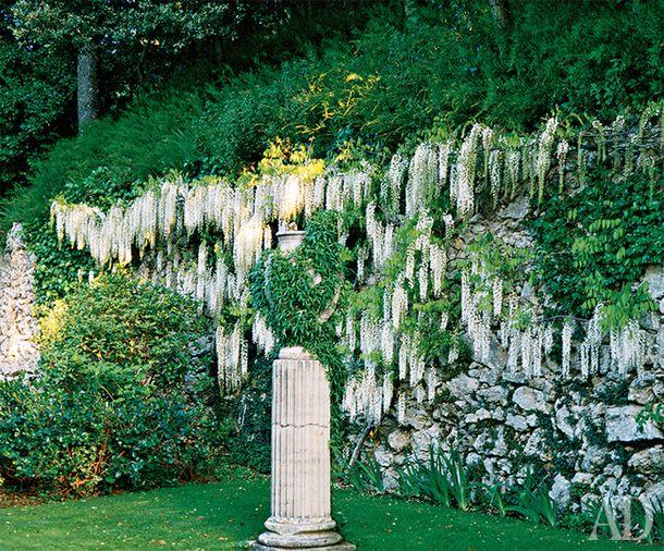 Сад в поместье Валентино Гаравани в Тоскане
