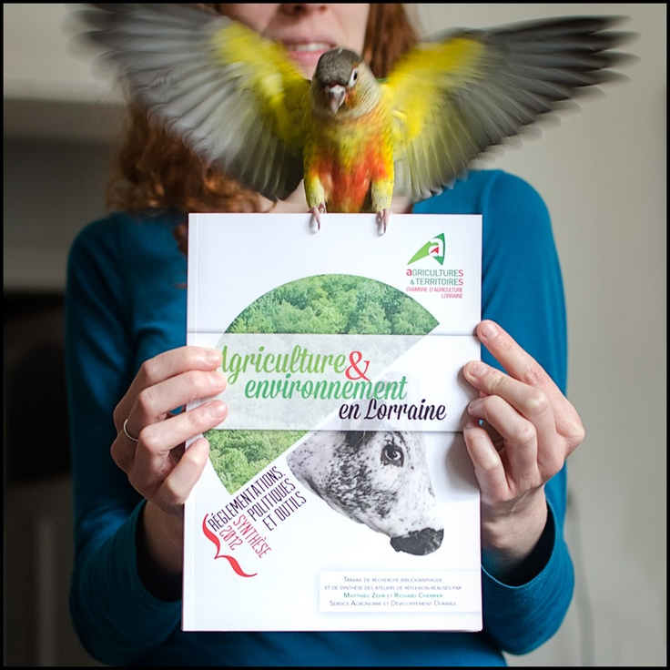 A book presented by my bird.