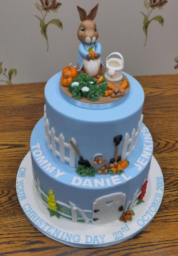 Peter Rabbit Christening Cake by Lorraine Yarnold