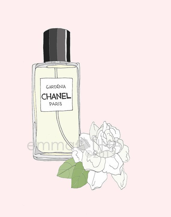 Chanel Gardenia Perfume Illustration by emmakisstina on Etsy