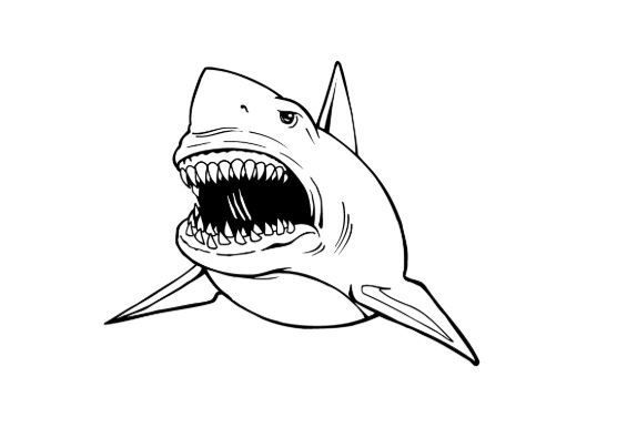 Great White Shark Coloring Page Full Shark Coloring Pages Coloring Pages White Sharks