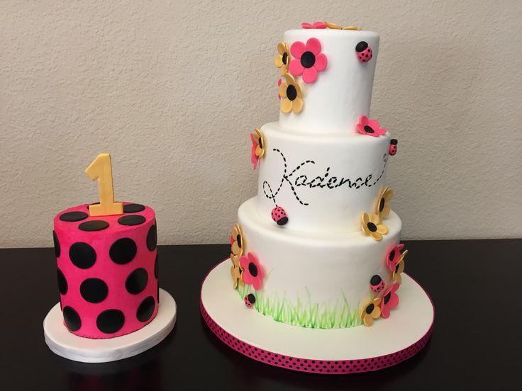 Ladybug cake and smash cake