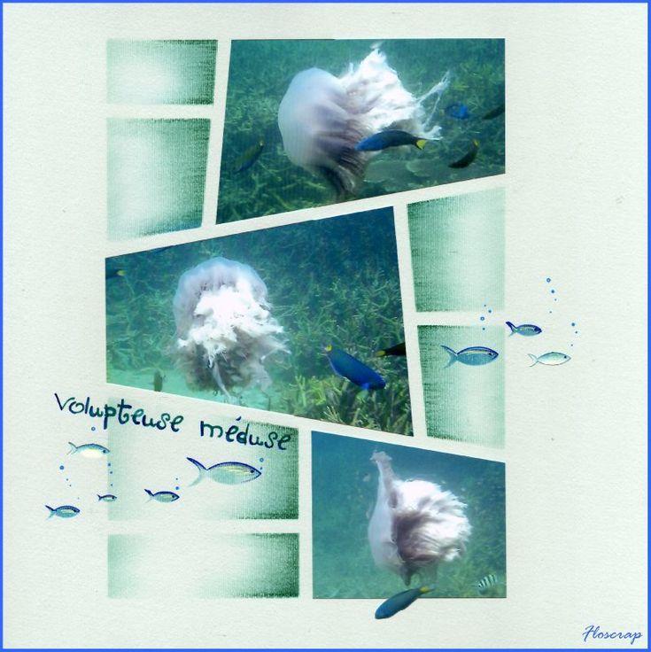 Voluptueuse méduse