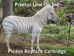 Printer Ink Low