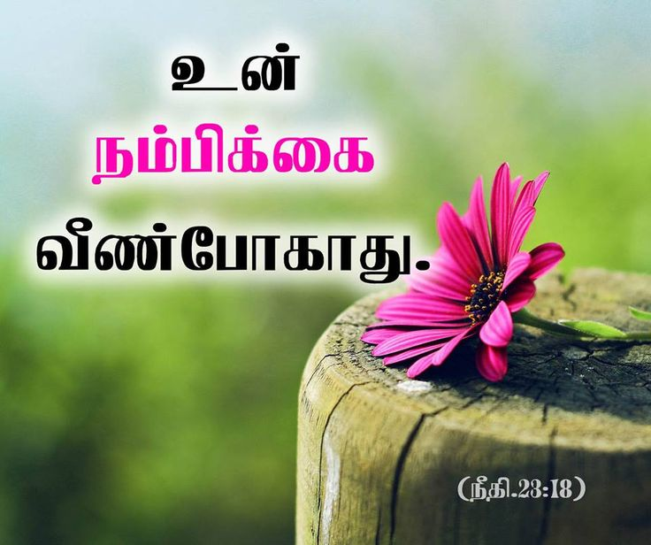 Blessing Tamil Bible Verse, Mobile Tamil Bible Quotes,